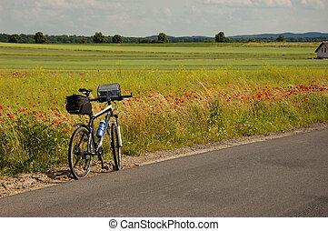 polônia, maravilhoso, paisagens