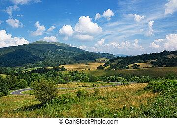polaco, carpathians, montanhas verdes