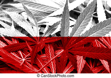 Poland Flag on cannabis background