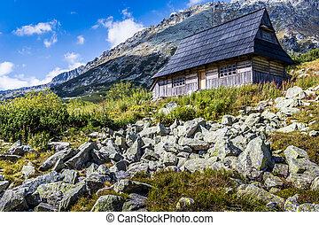 poland., montagne, tatra, europe., vista, andando gita, trail.