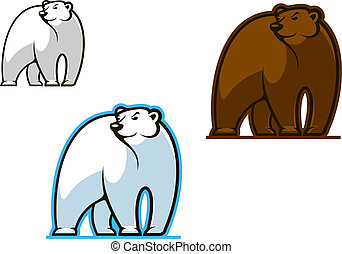 Polar and brown bear