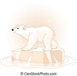 Polar Bear on the ice floe