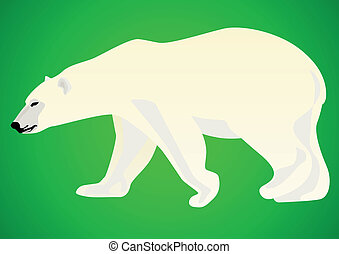 Polar bear-predatory animals live in the Arctic. Animal on a...