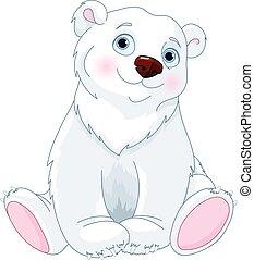 polar bear, zittende