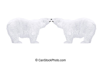 polar bears in love  - arctic wild animals