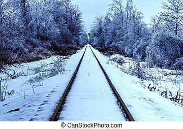 Polar Express - Railroad tracks traverse through the beauty...