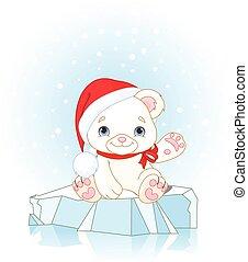 polar, weihnachten, bär