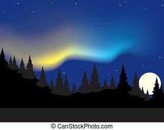 polaris, aurora, encima, vector, bosque
