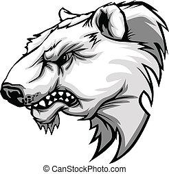 polarny, głowa, niedźwiedź, wektor, carto, maskotka