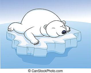 polarny miś, lód, spoczynek