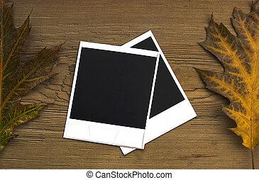 polaroid, cornici, sopra, autunno, fondo