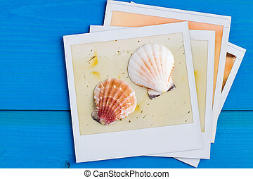 Polaroid Frame and Seashell