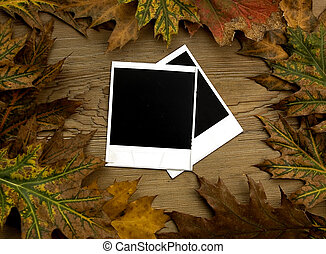 Polaroid frames over autumn background