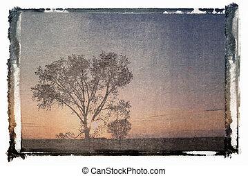 polaroid overdracht, landschap.