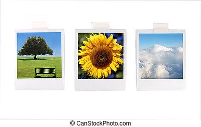 Polaroid photos - Collection of polaroid landscape images