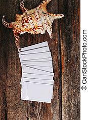 Polaroid with sea shell