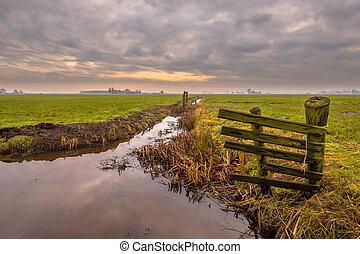 Polder landscape under cloudy sky - Polder landscape on...