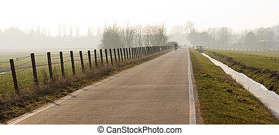 Polderroad on winterday - Long straight polderroad on misty...