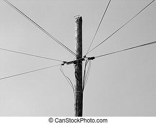 Wooden utility pole OLYMPUS DIGITAL CAMERA