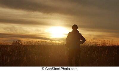 pole, człowiek, sylwetka, wschód słońca, natura
