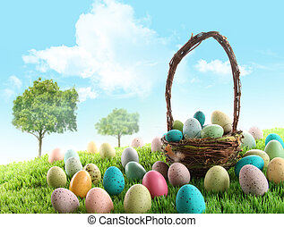 pole, jaja, wielkanoc, barwny, trawa
