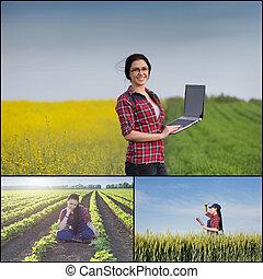 pole, kobieta, rolnik