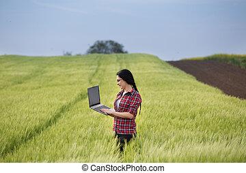 pole, laptop, dziewczyna, rolnik