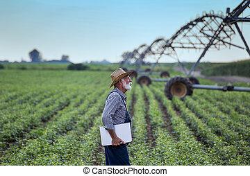 pole, laptop, soja, rolnik