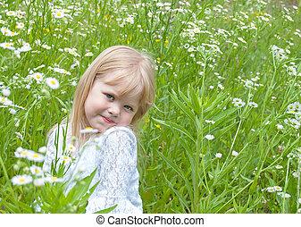 pole, mała dziewczyna, margerytki