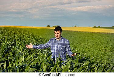 pole, nagniotek, tabliczka, rolnik