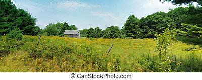 pole, stodoła