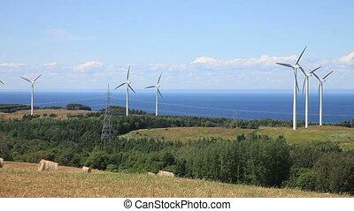 pole, turbina, wiatr