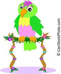 poleiro, flor, papagaio