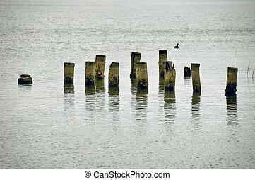 poles in a lake