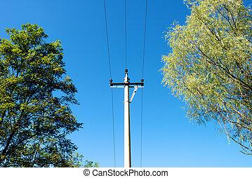 Poles under the blue sky