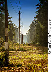 poles with electric wires