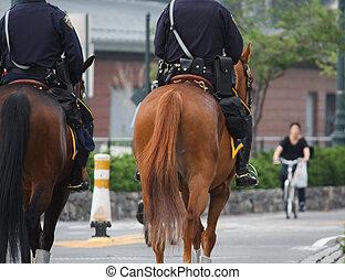 policías, a caballo