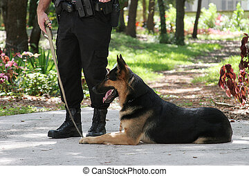 Police Dog 1 - A policeman with his police dog.