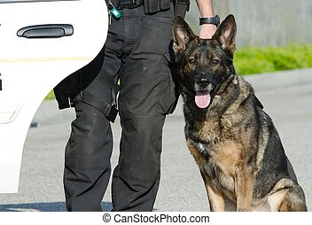 A police dog sitting next to his handler.