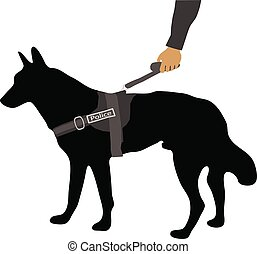 police dog on a leash