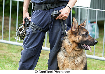 Police dog. Policeman with a german shepherd on duty.