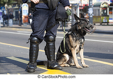 police dog - Policeman with dog
