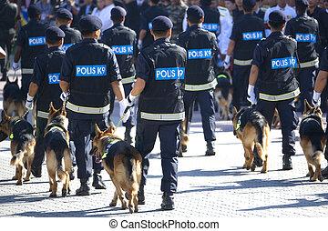 police, (k9), unité, canin