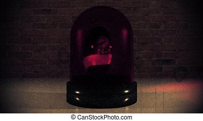 Police light flashing law enforcement hazard siren cops...