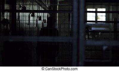 Police man lurking inside a jail - A medium shot of a...