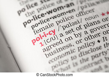 Policy definition in the dictionary