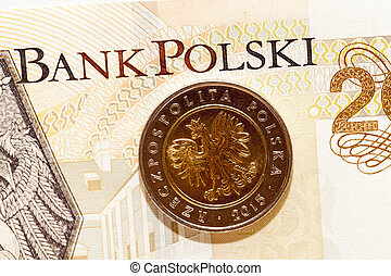 Polish coins close up