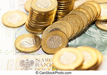 Polish coins close up