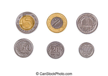 Polish coins