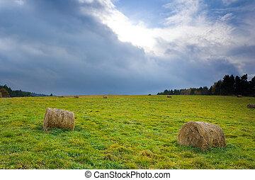 Polish countryside landscape